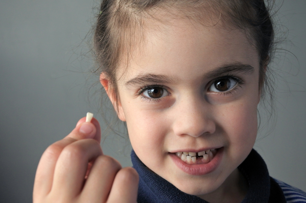 Proud young girl (age 6) holds her first falling milk teeth, looks at the camera. Childhood healthcare concept.real people copy space